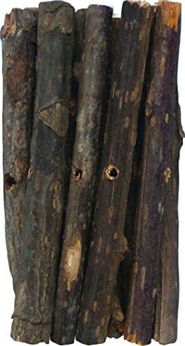 Big Branch Bites