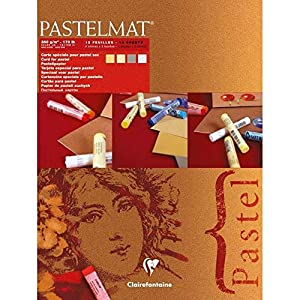 Clairefontaine 96016C Pastelmat, glued pad, 18x24cm, 18 x 24 cm, Assorted Colours