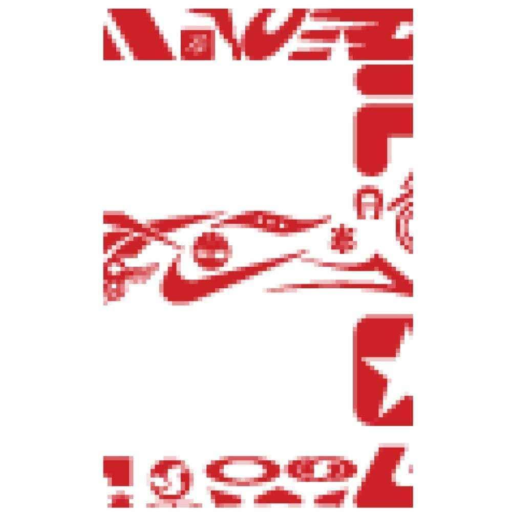 JORDAN HYDRO 2 (GS) BIG KIDS 313194-001 (4, BLACK/METALLIC SILVER)