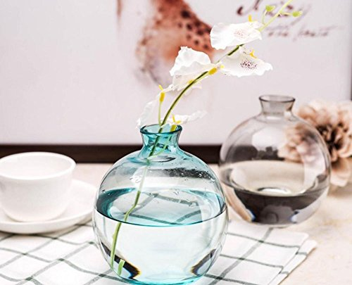 """(Janicestyle The round ball glass vase Household Table Decoration Simple Flask(Blue) 5.3"""")"""