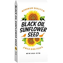 TMF Premium Quality Black Oil Sunflower Bird Seed , 50 lb