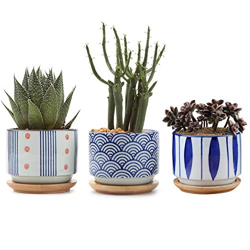 T4U 3 Inch Ceramic Succulent Planter Pots with Bamboo Tray Set of 3, Japanese Style Porcelain Handicraft as Gift for Mom Sister Aunt Best for Home Office Restaurant Table Desk Window Sill Decoration