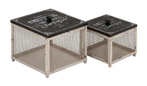 Benzara 97204 Fancy Styled Unique Metal Wood Box by Benzara (Image #1)