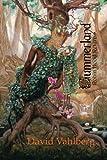 img - for Summerland: Robin Hood Returns book / textbook / text book