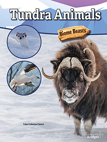 Biome Beasts Tundra Animals