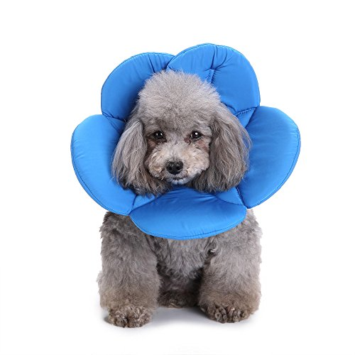 Smdoxi Pet Cute Comfy Cone - Post Surgery & Stress-Free Recovery Collar - Durable, Scratch, Bite, Water Resistant - With Adjustable Velcro Enclosures for Dogs & Cats Sunflower Pet (Blue, M)