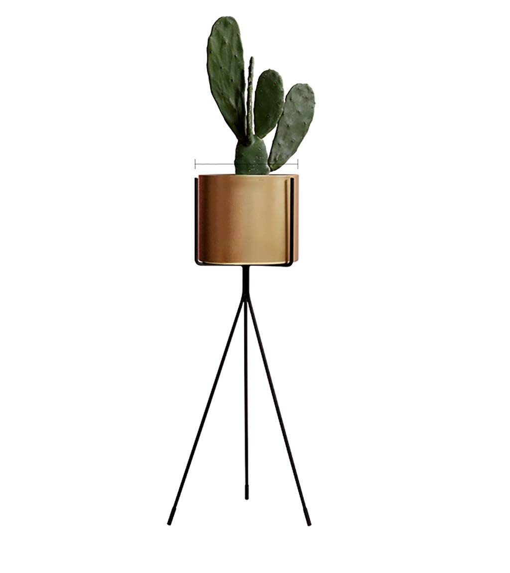 Plant Stand,Flower Stand for Living Room, Nordic Style Creative Floor Pot Rack, 4 Color (Color : B, Size : 8030cm)