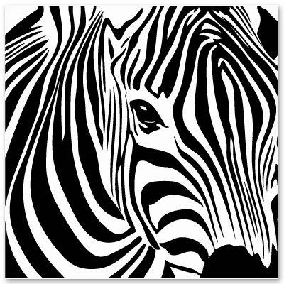Zebra Square Vinyl Sticker - Car Window Bumper Laptop - SELECT SIZE
