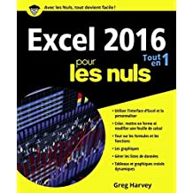 Excel 2016 pour les nuls: Tout en 1