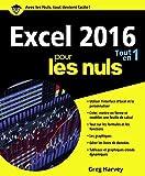Excel 2016 Tout en un pour les Nuls