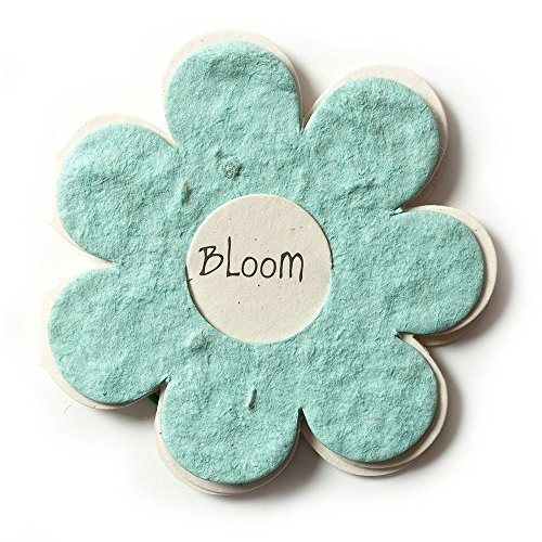 Bloomin Mini Powder Blue Flower-Shaped Seed Paper Enclosure Cards 9 Card Set - Perfect for Valentine's Day, Mother's Day and Wedding Anniversaries! Size: 2.25 x ()