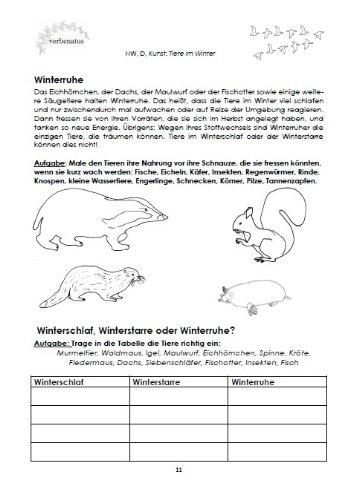 Tiere im Winter: Vom Überwintern, Erwachen und Leben in freier Natur ...
