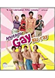 Another Gay Movie & Another Gay Sequel: Gays Gone [Blu-ray]