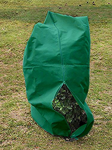 "HGmart Zipper Frost Protection Plant Cover Fabric Frost Blanket Outdoor Shrub Jacket for Winter Frost Cold,1.5oz 120""x144"",Dark Green"