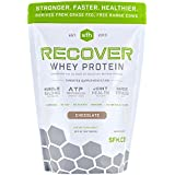 SFH Recover Whey Protein Powder | Great Tasting 100% Grass Fed Whey for Post Workout | All Natural | No Soy, No Gluten, No RBST, No Artificial Flavors (Bag, Chocolate)