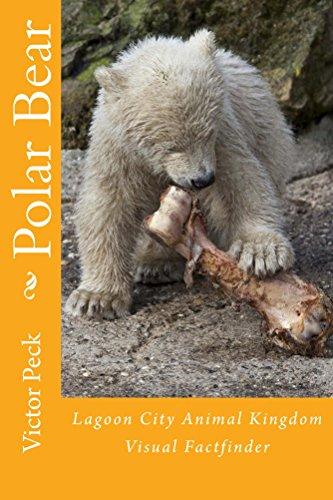 Polar Bear: Lagoon City Animal Kingdom Factfinder