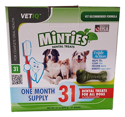 minties-dental-treats-for-all-dogs-one-month-supply-31-treats-net-wt-31oz