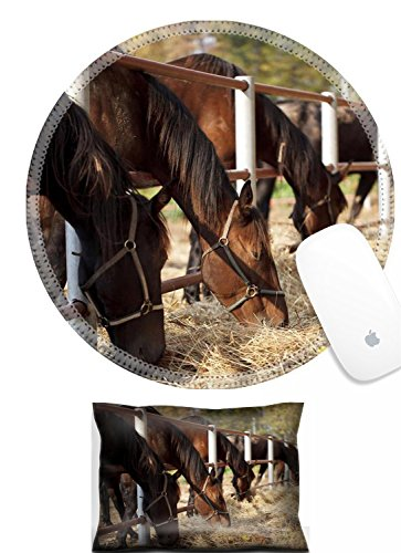 Luxlady Mouse Wrist Rest and Round Mousepad Set, 2pc IMAGE: 34450654 Several horses in the paddock and bent over eating dry grass
