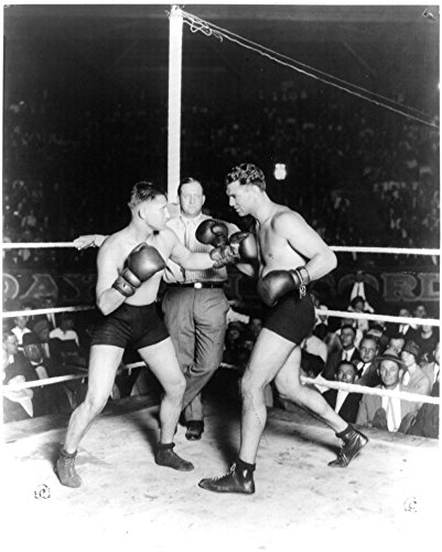 1925 Photo Gus Wilson, Jack Dempsey, Ray Newman, San Antonio, Tex., Sept. 25, 1925 Jack Dempsey preparing to exchange punches with Gus Wilson in boxing ring in front of large crowd; referee, Ray Newma
