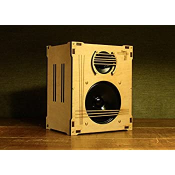 Amazon.com: DIY Bluetooth Speaker Kit - Wireless HiFi ...