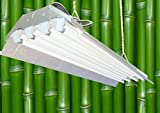 DuroLux DL844E T5 Fluorescent 4Ft 4 Lamps with 6500K and 20000 Lumen Grow Lights