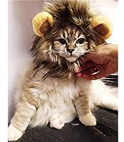 Lion Mane Wig for Cat Costume