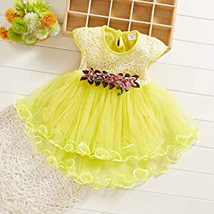 0-24 Months, Toddler Baby Kids Girls Flowers Floral Tulle Ruched Princess Dresses Clothes (Yellow, 6-12 Months)