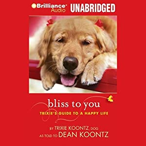 Bliss to You Audiobook