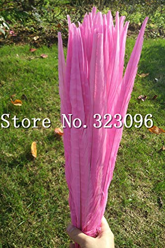 Maslin 100PCS Natural Feathers Ringneck Pink Feathers Fly Tying 40-45cm Pheasant Feathers for Sale Decoration Wedding Material Christma ()