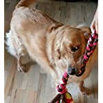 51iKn1lb7fL. SS150  - Duke's Digs Dog Rope Tug
