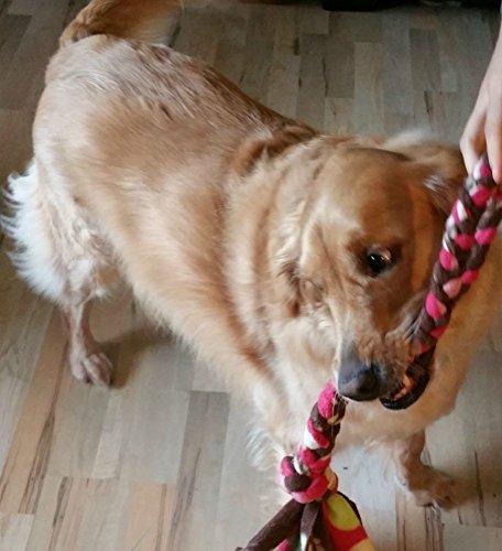 51iKn1lb7fL - Duke's Digs Dog Rope Tug