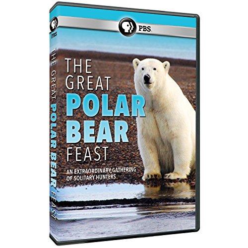 The Great Polar Bear Feast DVD - Great Polar Bear