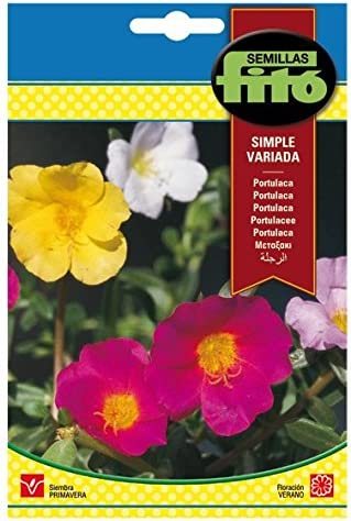 Semillas Fitó 590 - Semillas de Portulaca Simple Variada: Amazon ...