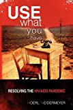 Use What You Have, Roger W. Hoerl And Presha E. Neidermeyer, 1441521135