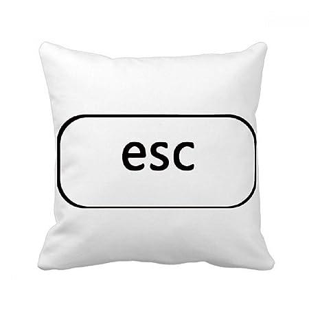 Beatchong Keyboard Symbol Esc Square Throw Pillow Insert Cushion