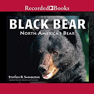 Black Bear Audiobook