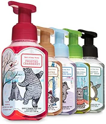 Bath & Body Works Nordic Noel Gentle Foaming Hand Soap with Essential Oil 8.75 fl oz / 259 mL Each Pack of 5