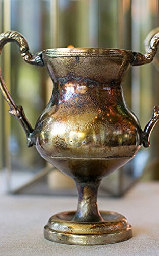 Wayfair Gold Champion Urn Trophy Vase 10
