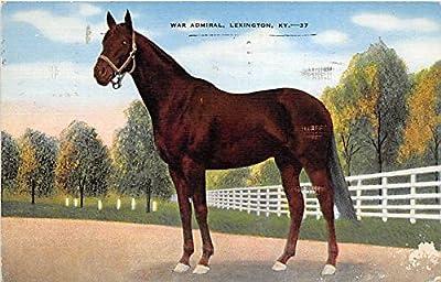 War Admiral Lexington, Kentucky, KY, USA Old Vintage Horse Racing Postcard Post Card