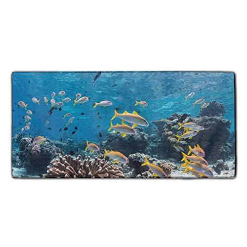 Reef Fish Microfiber Multi-Purpose Cleaning Towels Perfect for Kitchens, Dishes, Car, Dusting, Drying Rags, 11.8