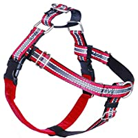 """2 Hounds Design 1"""" Medium Reflective Red Freedom Harness Package"""