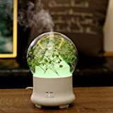 Gessppo Dried Flower LED Ultrasonic Air Humidifier Oil Aroma...