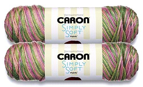 (Caron Simply Soft Bulk Buy Paints 100% Acrylic Yarn (2-Pack) ~ 5 oz. Skeins (Rose Garden))
