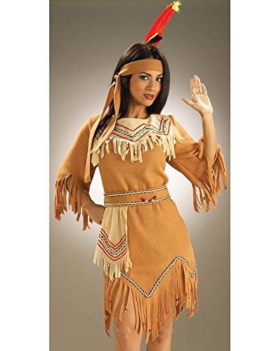 Pocahontas Indian Costumes (Forum Novelties Women's Adult Native American Maiden Costume, Multi Colored, One Size)