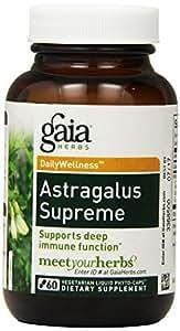 Gaia Herbs Astragalus Supreme Liquid Phyto-Capsules, 60 Count