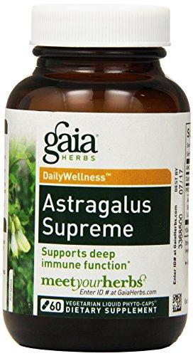 Gaia Herbs Astragalus Supreme, Vegan Liquid Capsules, 60 Count - Deep Immune Support, Stress Resistance, Stamina and Endurance Supplement, Astragalus Root, Schisandra (Astragalus Liquid Root)