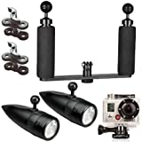 BigBlue Underwater Video Light Kit System 450 Lumen LED, for GoPro and Contour Action Camera Camcorder (camera not included)