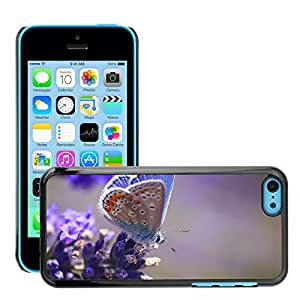 Hot Style Cell Phone PC Hard Case Cover // M00047015 animals butterfly macro lavander // Apple iPhone 5C