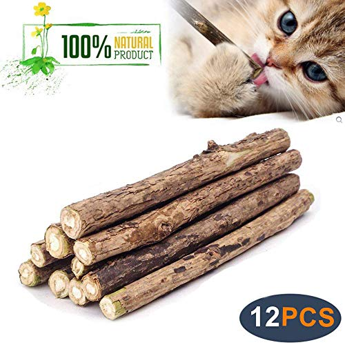 WoLover Natural Silvervine Sticks for Cats, Catnip Sticks Matatabi Chew Sticks Teeth Molar Chew Toys for Cat Kitten Kitty 2