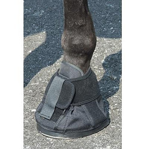 Intrepid International Penn Equine Natural Hoof Shoe, Size 2 by Intrepid International
